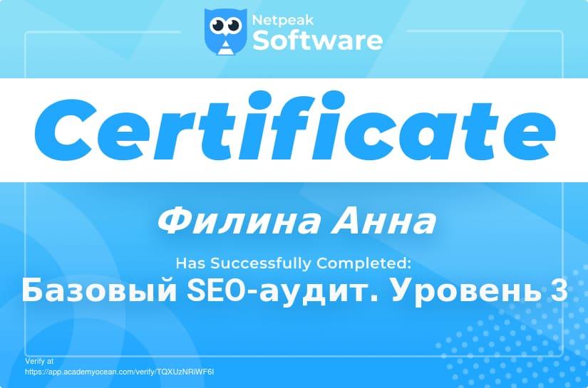 netpeaksoftware3